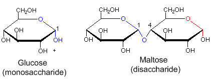 carbohydrate diagram with Maillard Reaction on Disaccharides besides Carbohydrates in addition Topic 32 Carbohydrates Lipids And additionally Monosacch further What Is The Difference In Structure Between Glucose And Fructose.