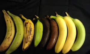 Try 3: bananas under white light
